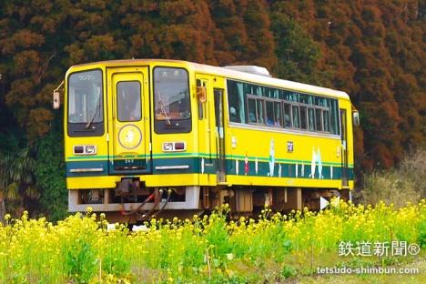 菜の花の中を走る「いすみ鉄道」(写真の「200型」は現在休車中)